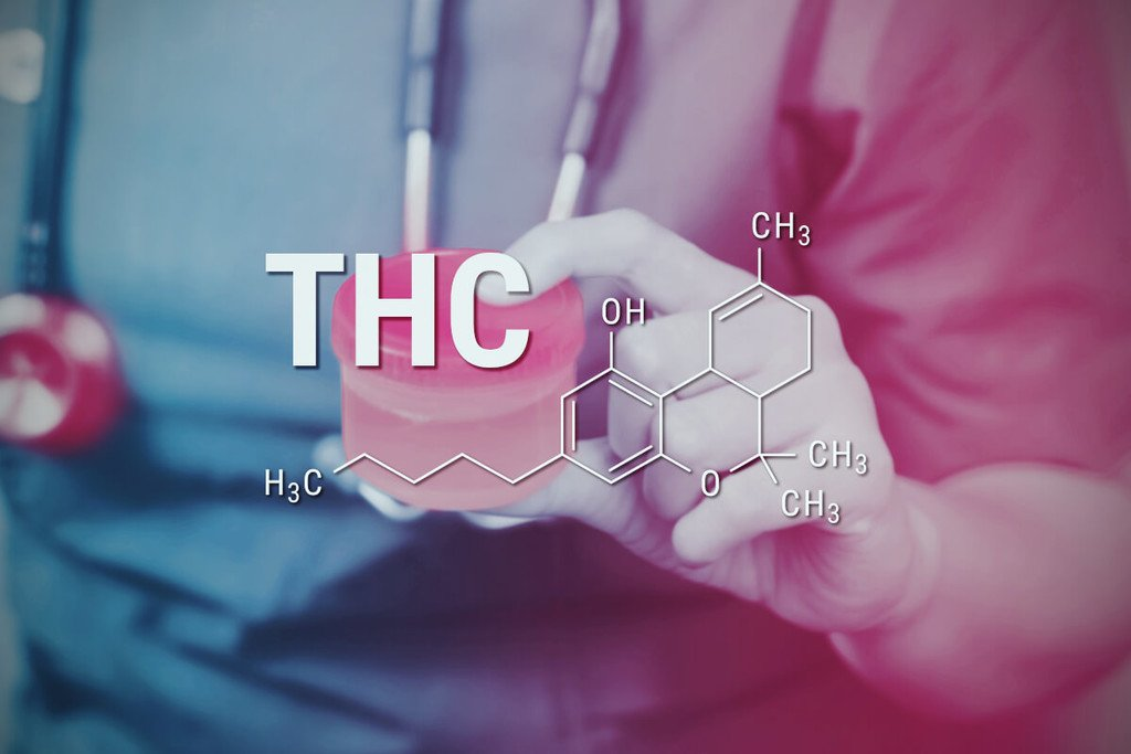 how to pass a drug test for thc